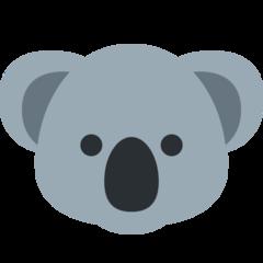 Raza profile picture