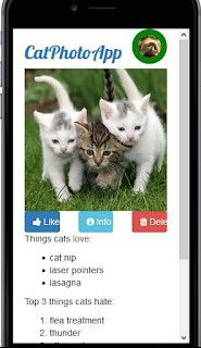 Icons on the Cat Photo App