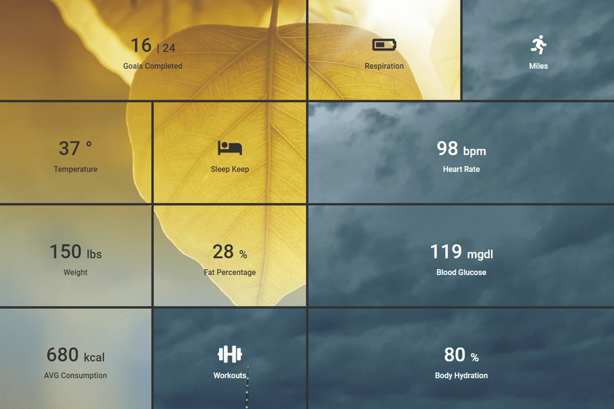 Health Dashboard Layout.png