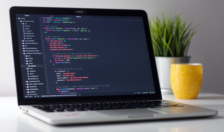 Cover image for Basic Html Elements Every Newbie Should Know